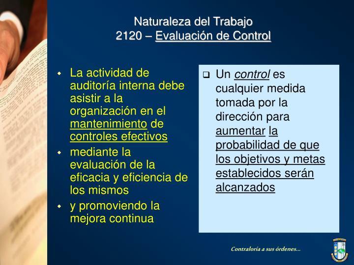 La actividad de auditoría interna debe asistir a la organización en el