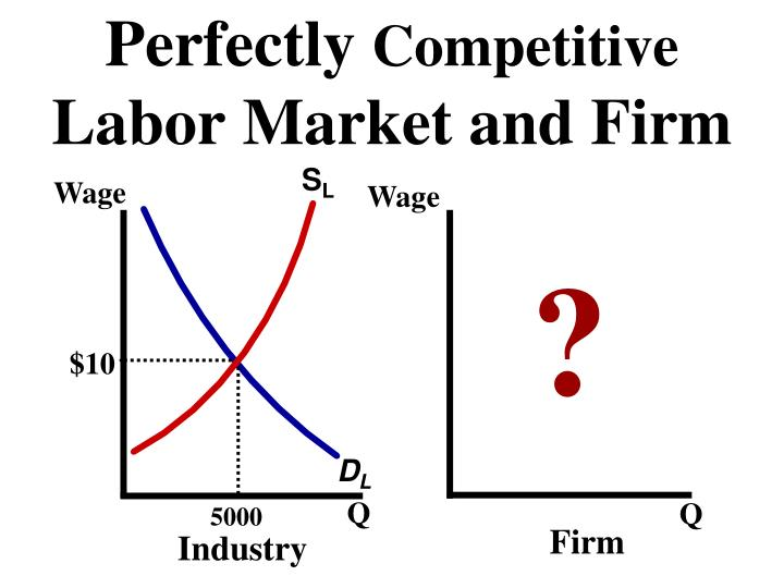 Perfectly competitive labor market and firm