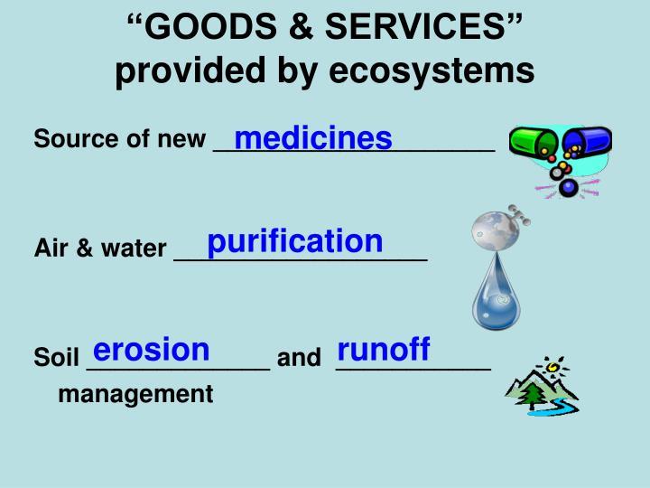 """GOODS & SERVICES"""