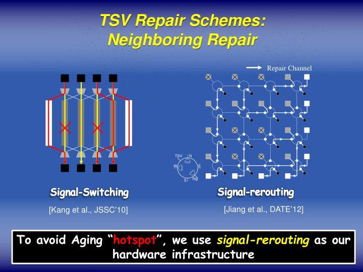 TSV Repair Schemes: