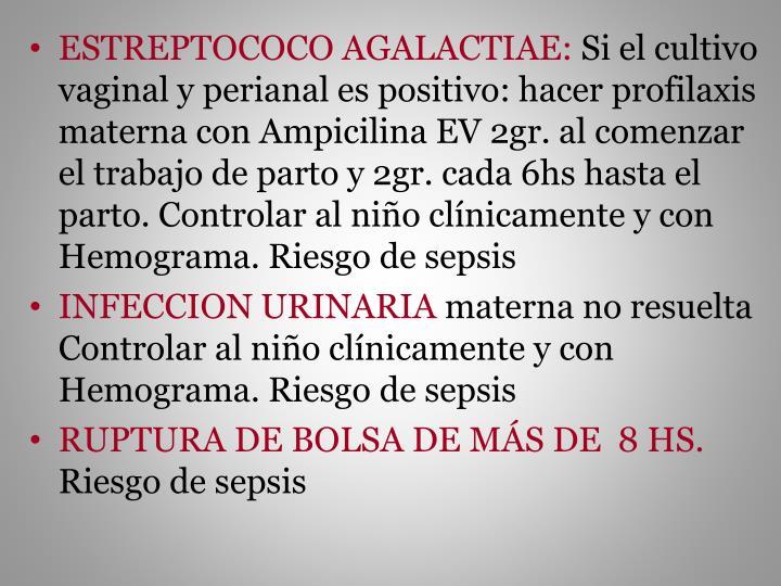 ESTREPTOCOCO AGALACTIAE: