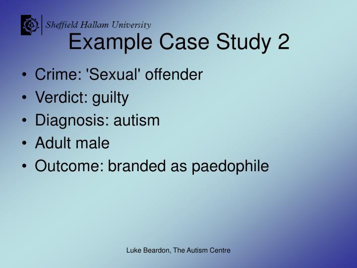 Example Case Study 2