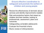 ensure effective coordination to safeguard and promote the welfare of children and young people