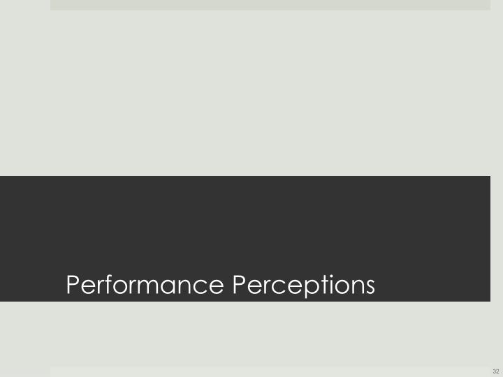 Performance Perceptions