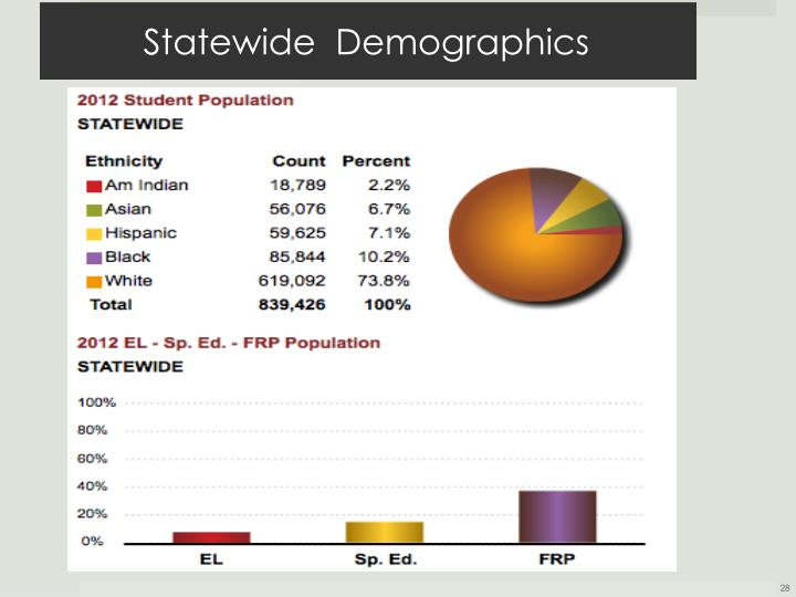 Statewide  Demographics