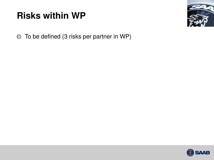 Risks within WP