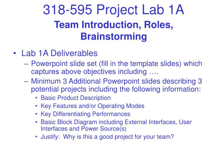 Team introduction roles brainstorming