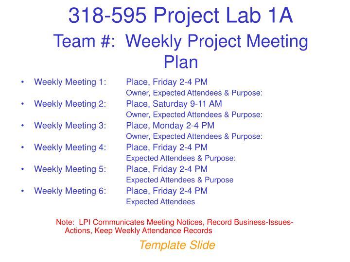 Team #:  Weekly Project Meeting Plan