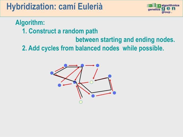 Hybridization: camí Eulerià