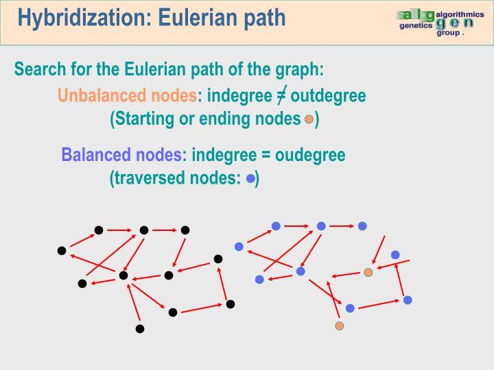 Hybridization: Eulerian path