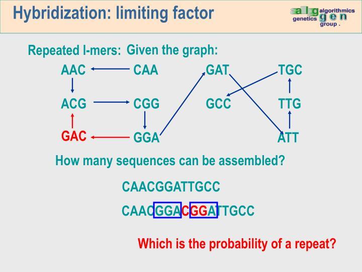 Hybridization: limiting factor
