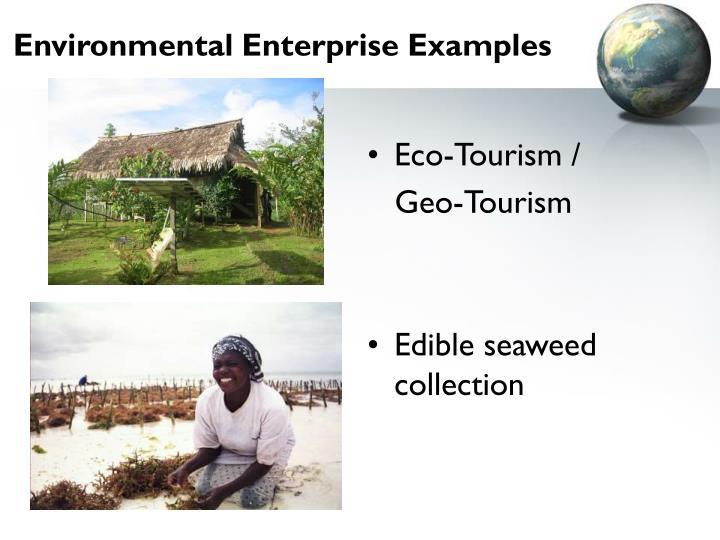 Environmental Enterprise Examples