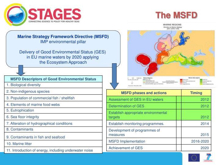 The MSFD