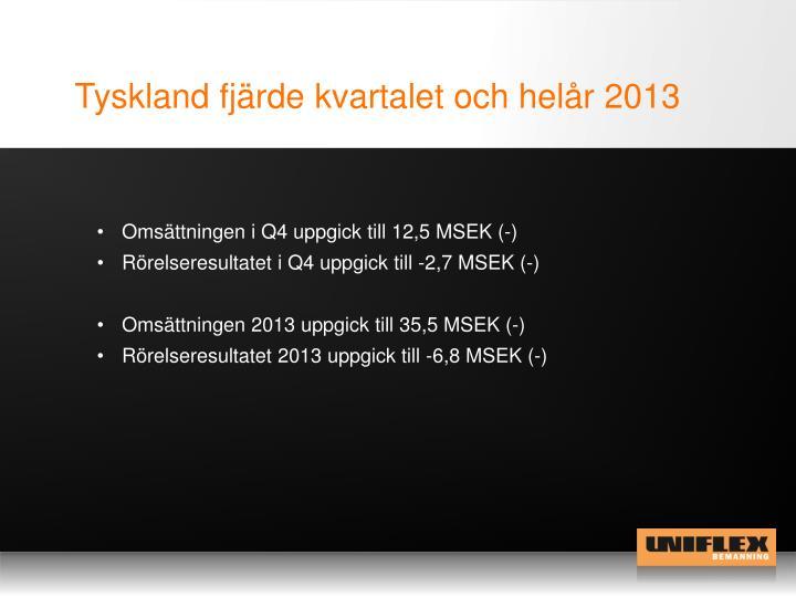 Tyskland fjärde kvartalet och helår 2013