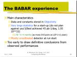the babar experience