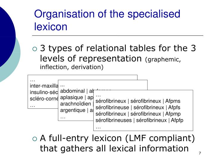 Organisation of the specialised lexicon