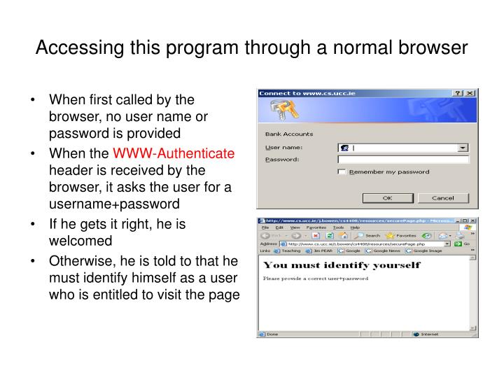 Accessing this program through a normal browser