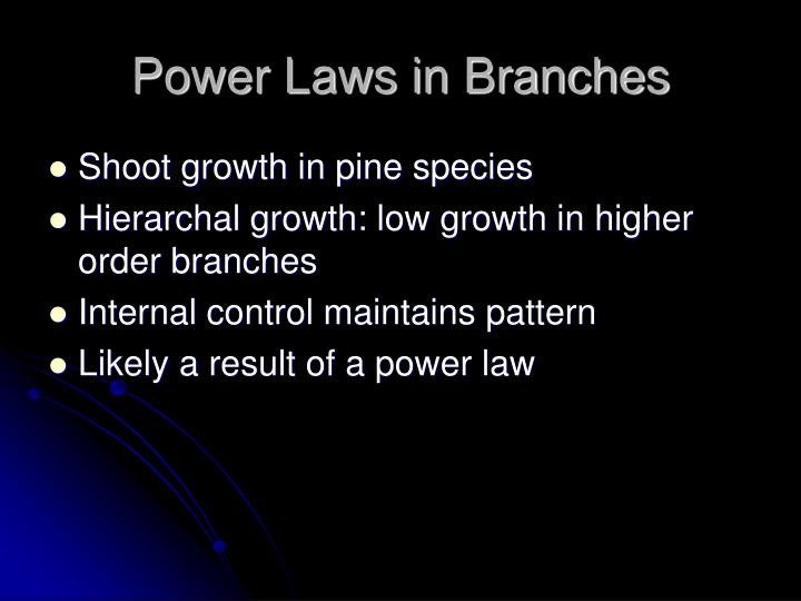 Power Laws in Branches