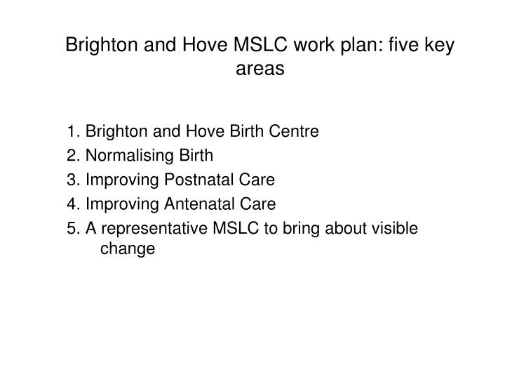 Brighton and Hove MSLC work plan: five key areas