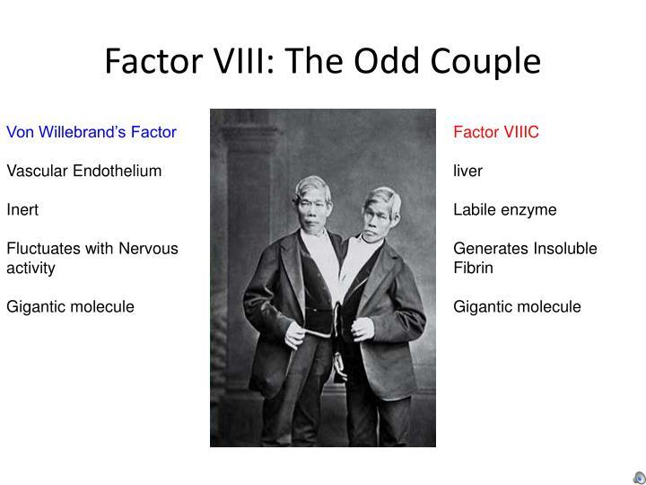 Factor VIII: The Odd Couple