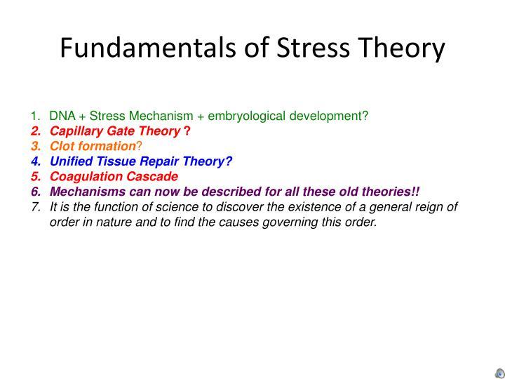 Fundamentals of stress theory