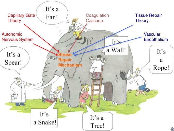 Capillary Gate Theory