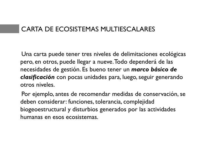 CARTA DE ECOSISTEMAS MULTIESCALARES