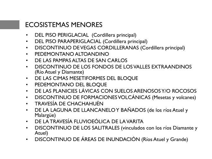 ECOSISTEMAS MENORES
