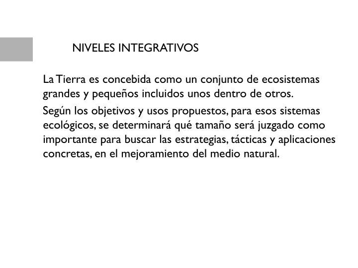 NIVELES INTEGRATIVOS