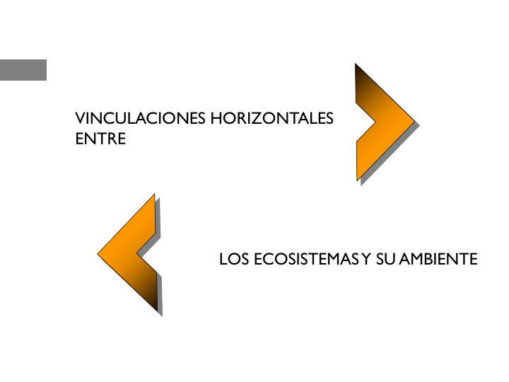 VINCULACIONES HORIZONTALES ENTRE