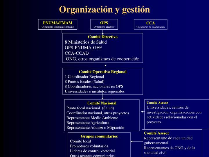 Organización y gestión