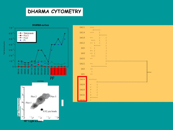 DHARMA CYTOMETRY