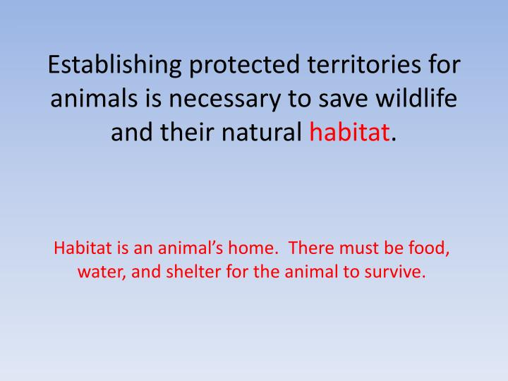 Establishing protected territories for animals is necessary to save wildlife and their natural