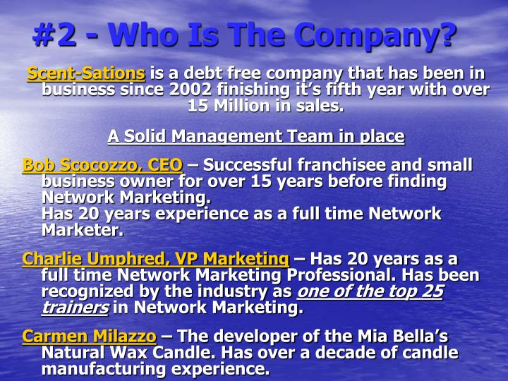 #2 - Who Is The Company?