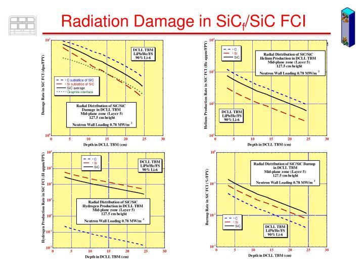 Radiation Damage in SiC