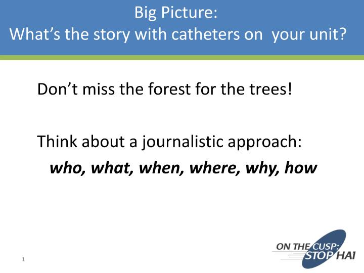 big picture what s the story with catheters on your unit n.