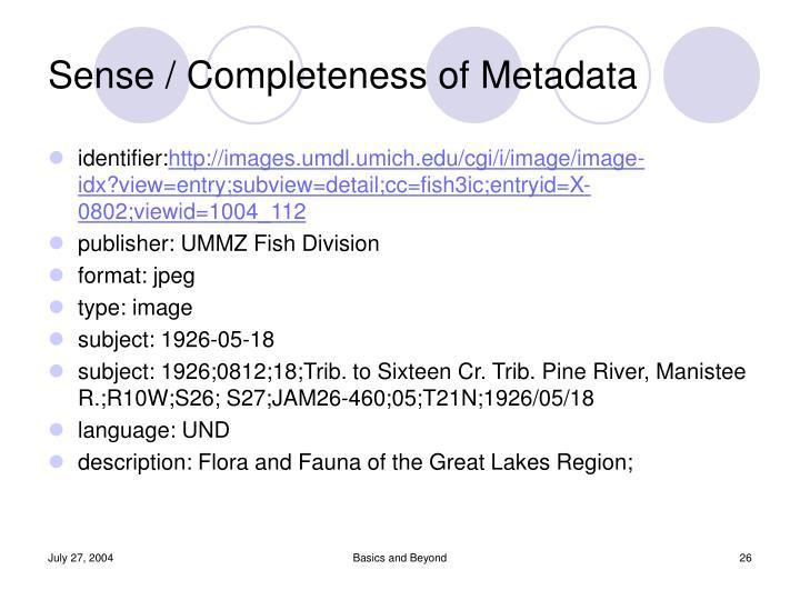 Sense / Completeness of Metadata