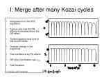 i merge after many kozai cycles