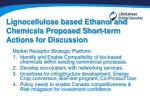 lignocellulose based ethanol and chemicals proposed short term actions for discussion2