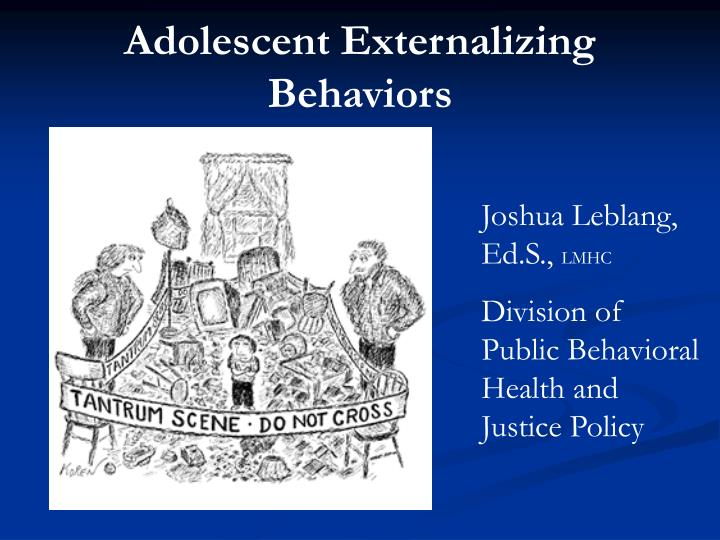 Adolescent Externalizing Behaviors