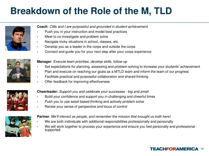 Breakdown of the Role of the M, TLD