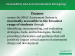 accessibility and accommodations workgroup2