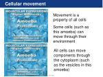 cellular movement