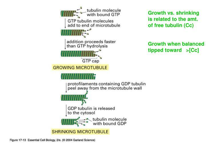 Growth vs. shrinking