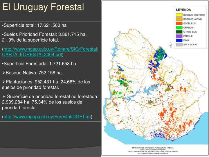El Uruguay Forestal