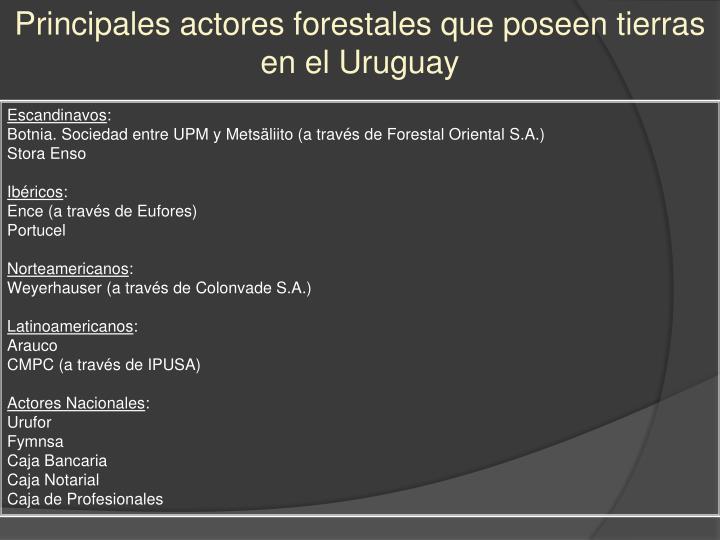 Principales actores forestales que poseen tierras en el Uruguay