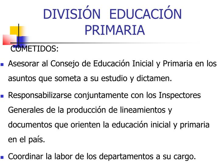 DIVISIÓN  EDUCACIÓN