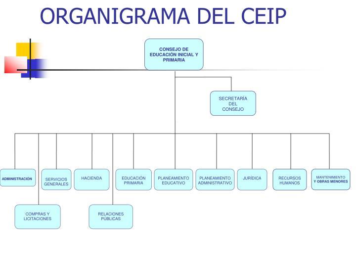 ORGANIGRAMA DEL CEIP