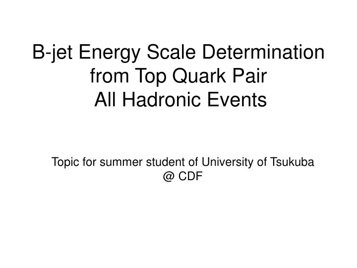 b jet energy scale determination from top quark pair all hadronic events n.