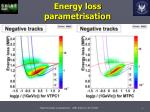 energy loss parametrisation1